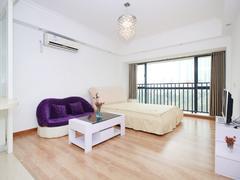 中天国际花园 一克拉公寓1室1厅1厨1卫 47.0m² 精致装修二手房效果图